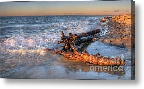 Twenty Two North Photography - Driftwood on Lake Superio... Print