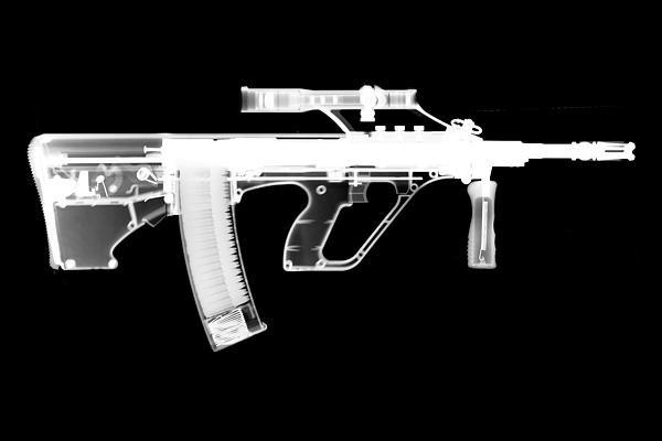 Ray Gunz - Msar STG-556 Reversed Print