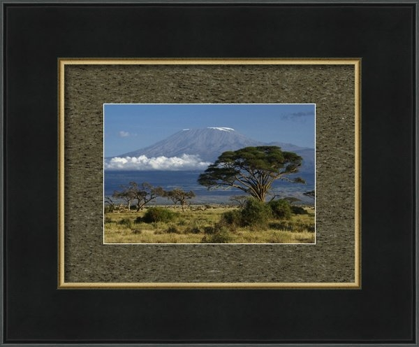 Michele Burgess - Mount Kilimanjaro Print