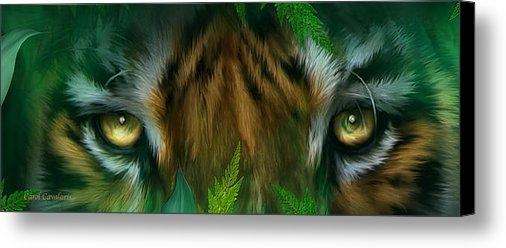Carol Cavalaris - Wild Eyes - Bengal Tiger Print