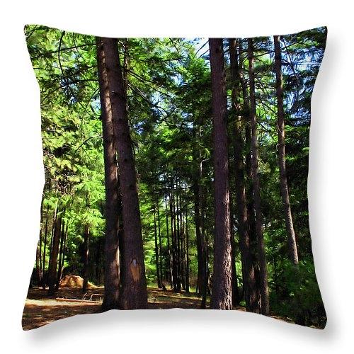 Joyce Dickens - Oakrun Forest Print