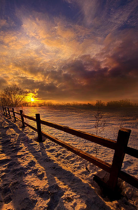 Phil Koch - Fence Walking Print