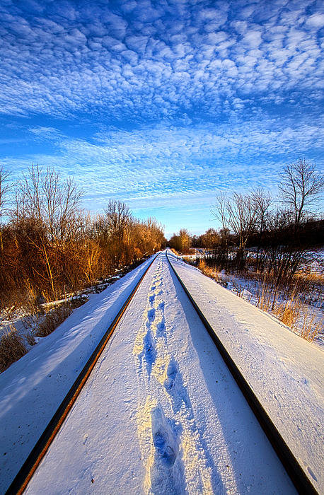 Phil Koch - Staying Within the Lines Print