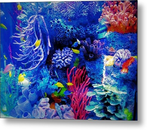 Dan Sproul - Aquarium Color Print