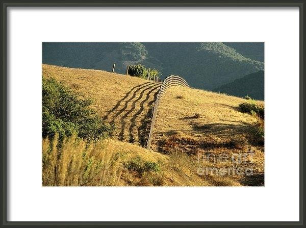 Ellen Cotton - Monterey Hills Print