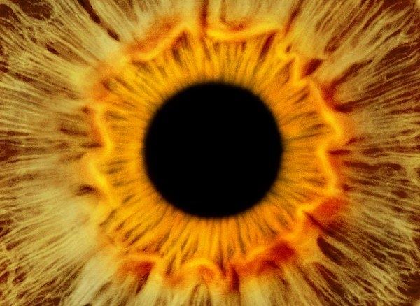Science Photo Library - Human eye Print