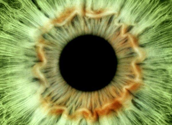 Science Photo Library - Green eye Print