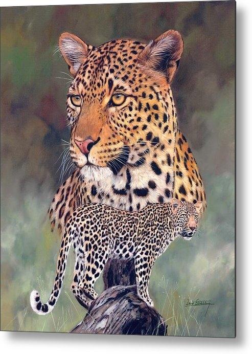 David Stribbling - Leopard Print