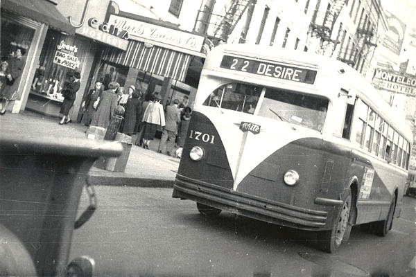 Cynthia Decker - Streetcar Named Desire Print