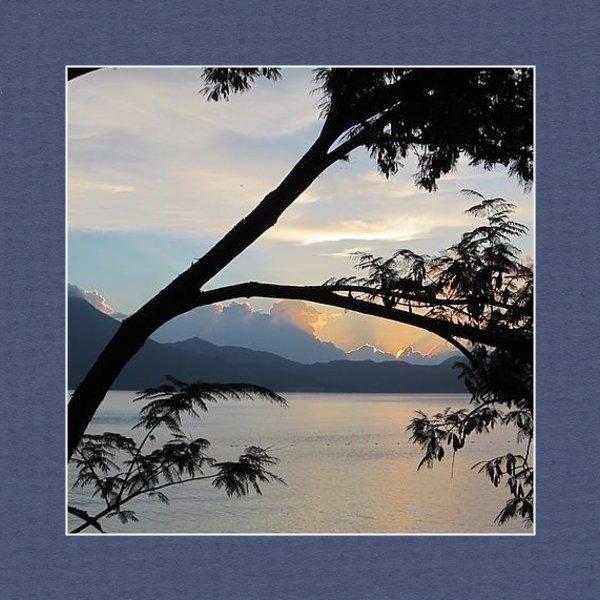 Josias Tomas - View through the branches Print