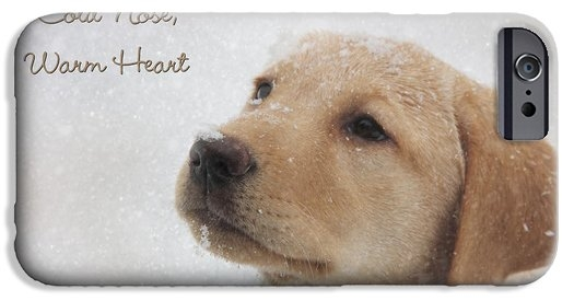 Lori Deiter - Cold Nose Warm Heart Print