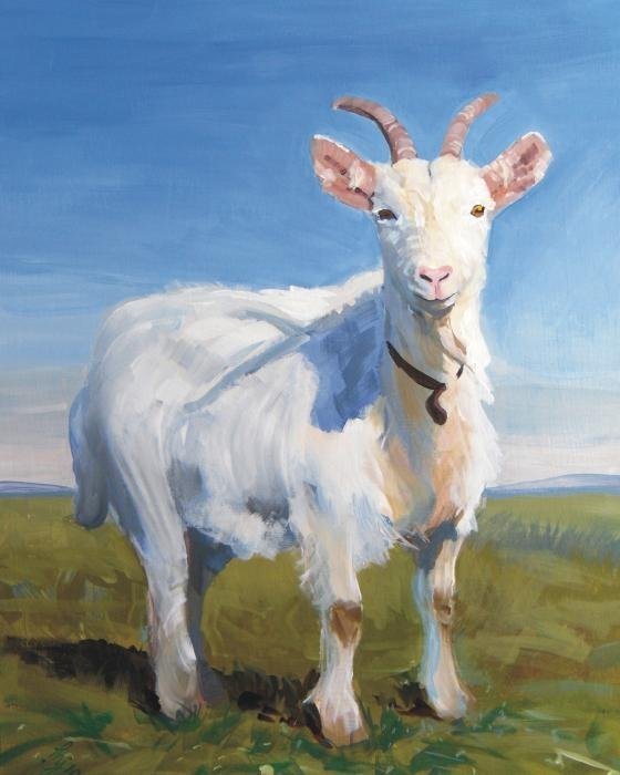 Mike Jory - White Goat Print