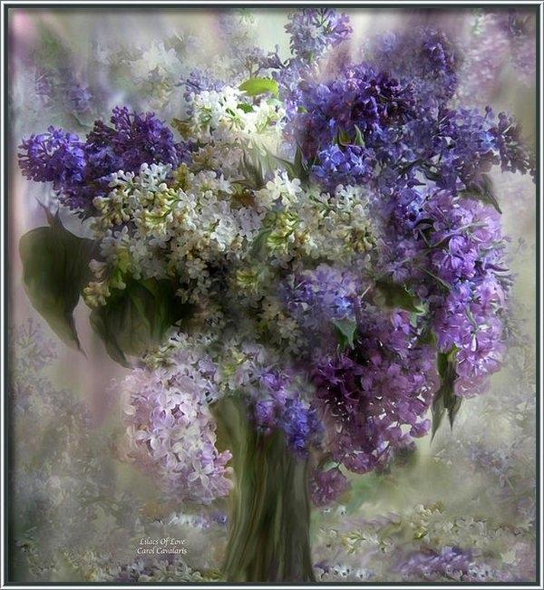 Carol Cavalaris - Lilacs Of Love Print