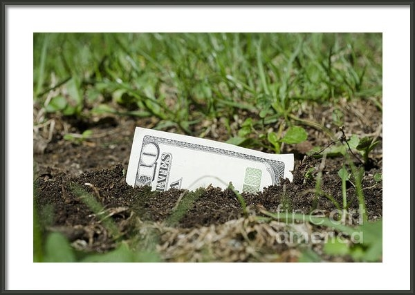 Mats Silvan - Growing money Print