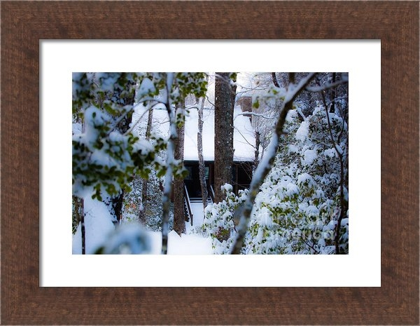 Donnie Whitaker - Cabin in the Woods Print