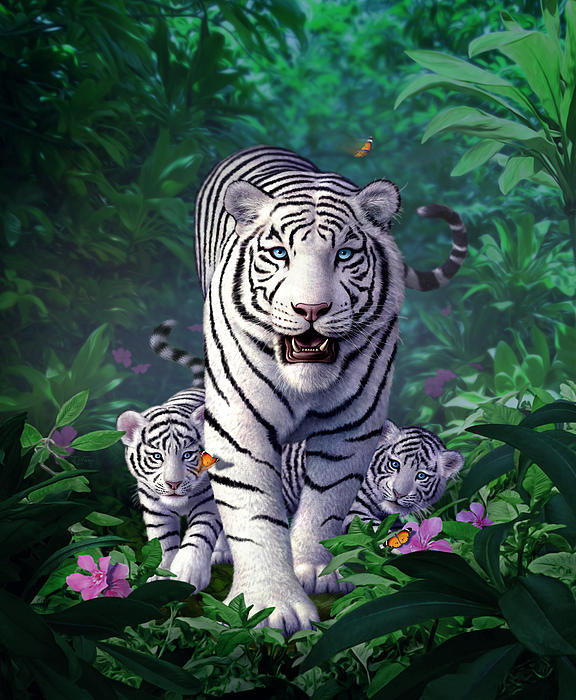 Jerry LoFaro - White Tigers Print