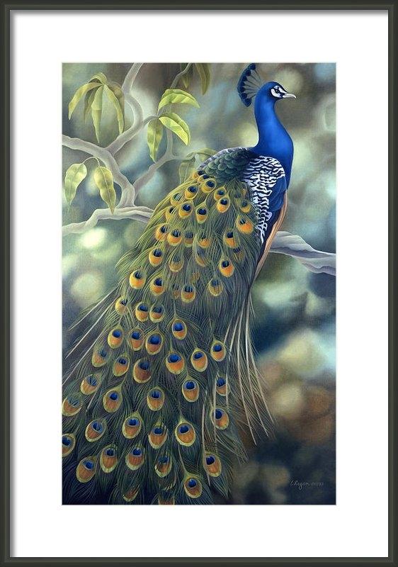 Laura Regan - Peacock Print