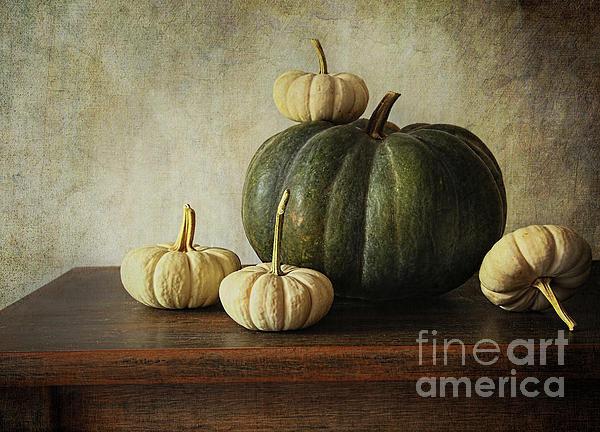 Sandra Cunningham - Green pumpkin and gourds ... Print