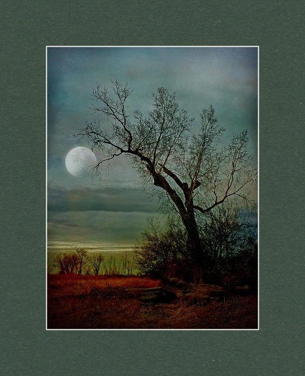 John Anderson - Winter Moon Print