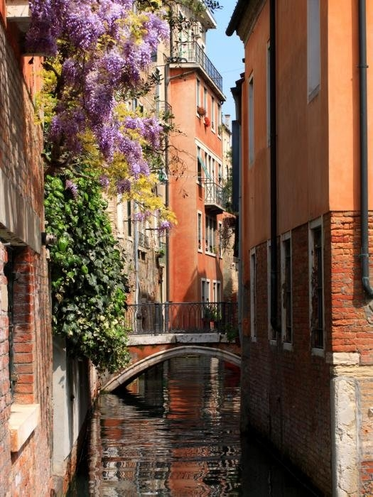 Michael Henderson - Canal in Venice with Flow... Print