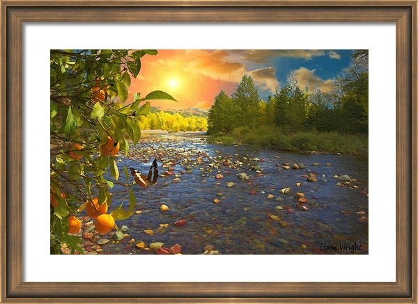 Liane Wright - The Riches Of Life Print