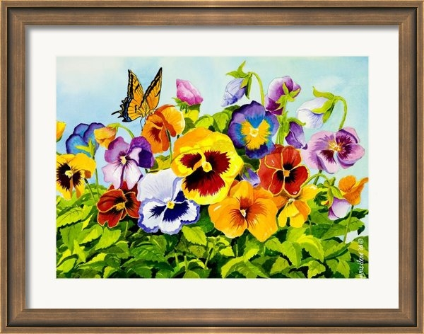 Janis Grau - Pansies with Butterfly Print
