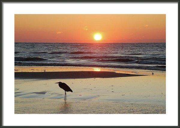 Michael Thomas - Heron Watching Sunrise Print