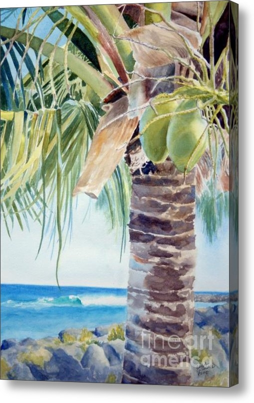 Lisa Pope - two coconuts -SOLD Print