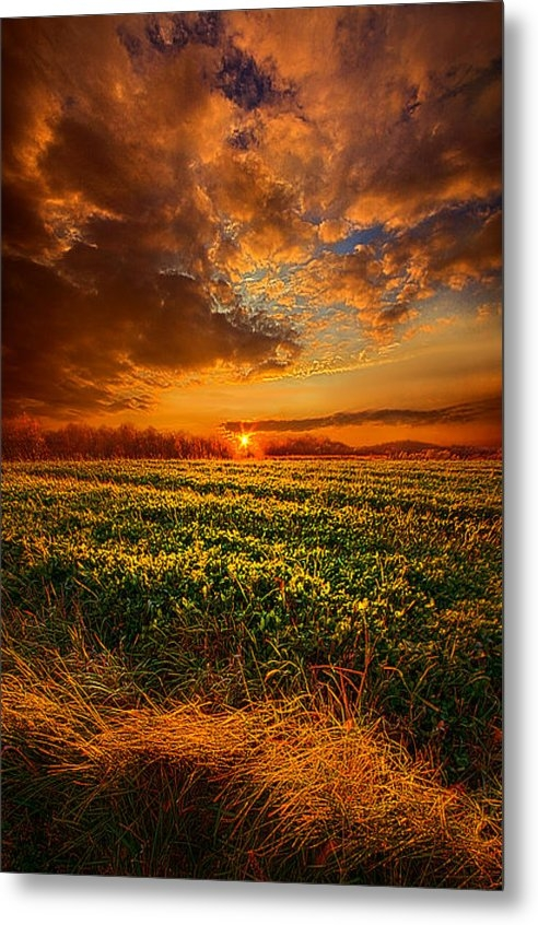 Phil Koch - Every Step of the Way Print