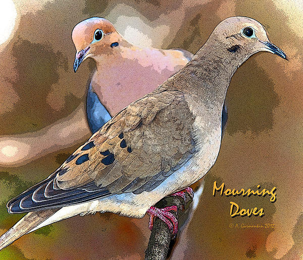 A Gurmankin - Mourning Dove Pair Poster... Print