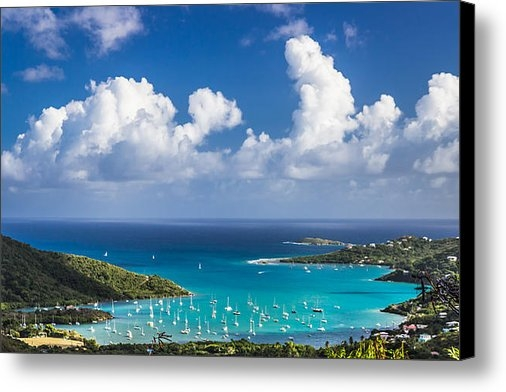 Sherry Talbot - Coral Bay Print