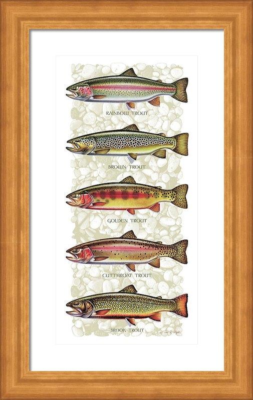 JQ Licensing - Five Trout Panel Print