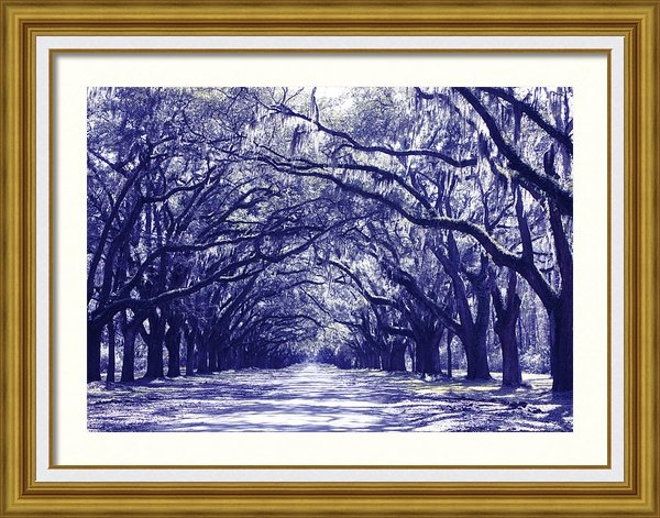 Carol Groenen - Blue World in Savannah Print