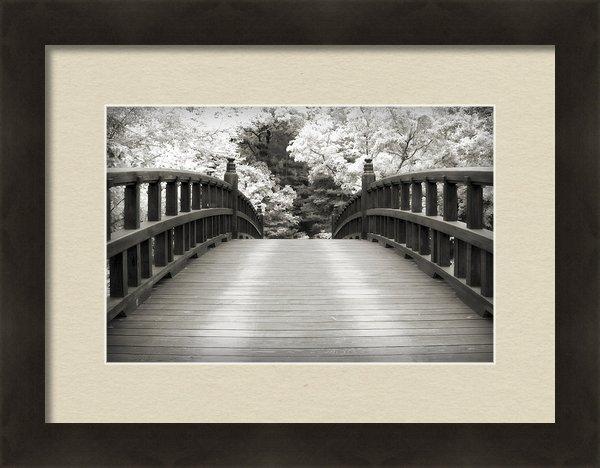 Adam Romanowicz - Japanese Dream Infrared Print
