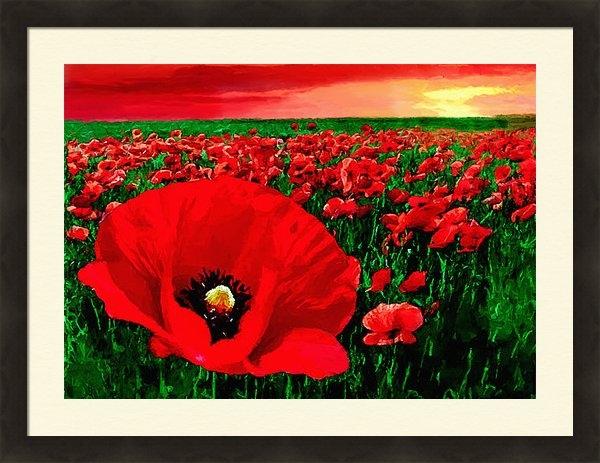 Bob and Nadine Johnston - Sunset California Poppy P... Print