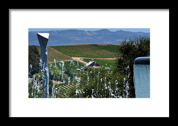 Jeff Lowe - Artesa Vineyards and Wine... Print