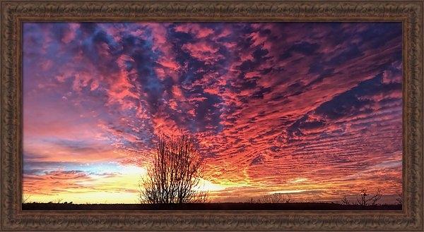 Tim Dahl - Texas Brilliant Sunset Pa... Print