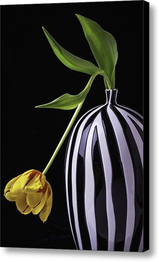 Garry Gay - Single Tulip In Vase Print