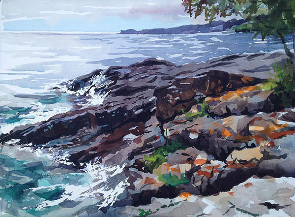 Spencer Meagher - Lichen Covered Rocks Print