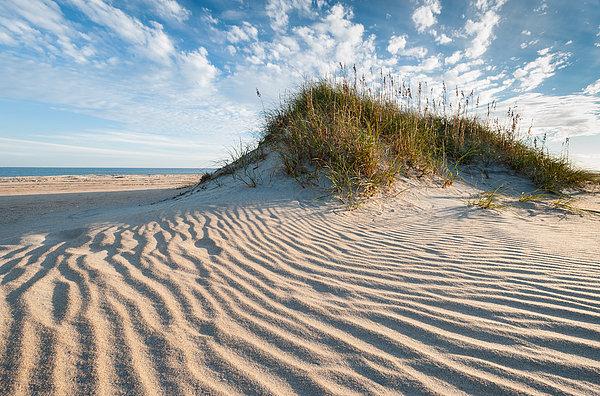 Mark VanDyke - Hatteras Dune Patterns Print