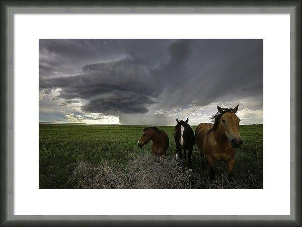 Zach  Roberts - Sensing the Storm #2 Print