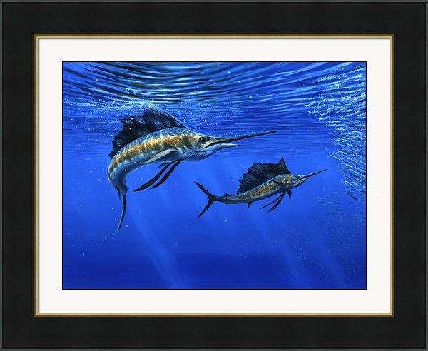 Guy Crittenden - Pacific Sailfish Print