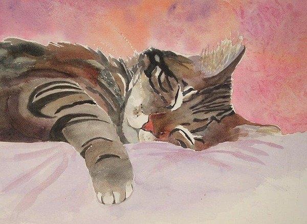 Brenda Kennerly - Sleeping Kitty Print