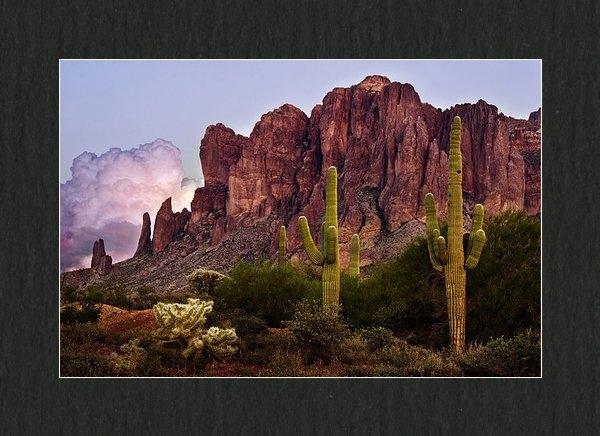 Dave Dilli - Saguaro Cactus and the Su... Print