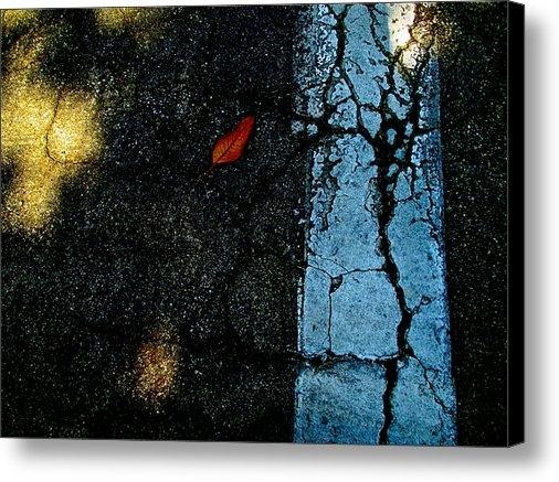 Mimi Seton - Sidewalk Tree with Moonli... Print