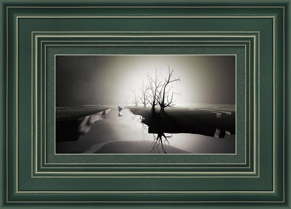 Justin Ortiz - Blackened Garden Print