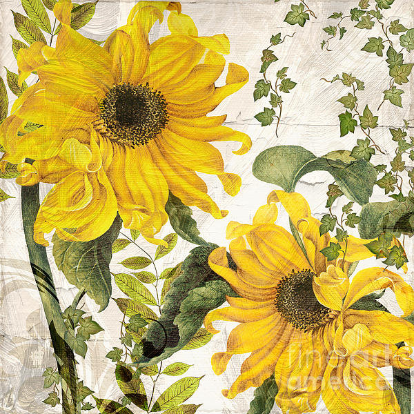 Mindy Sommers - Carina Sunflowers Print