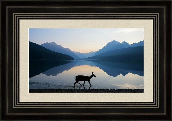 Dustin  LeFevre - The Grace of Wild Things Print