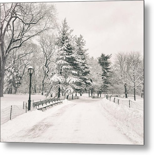 Vivienne Gucwa - Winter Path - Snow Covere... Print
