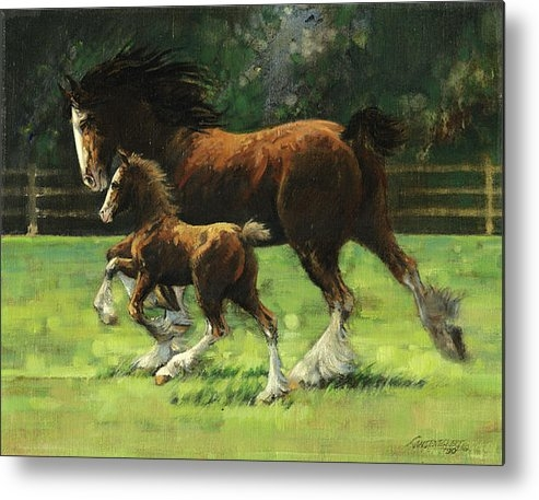 Don  Langeneckert - Clydesdale Mare and Colt Print